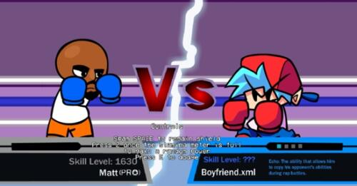 VS Matt Boixing Fight